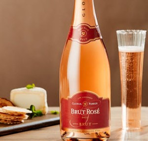 Perfect cheese wine - Ferrer Brut Rose