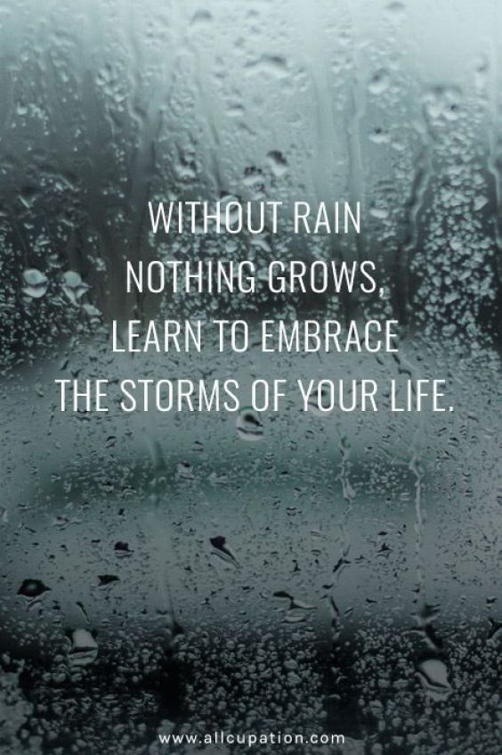Learn to embrace the storm! Quotes