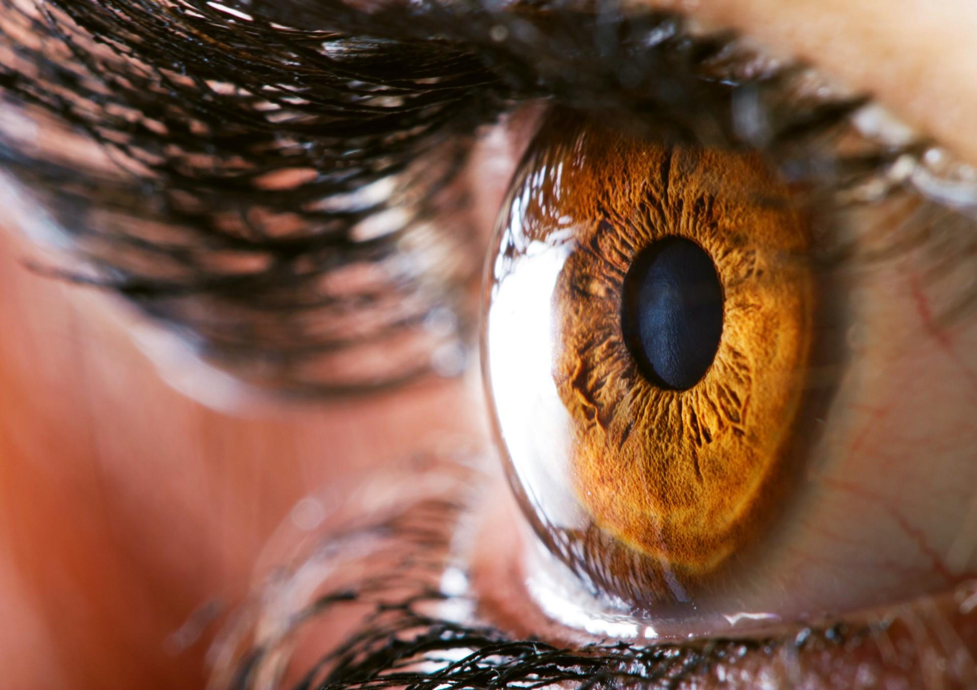 Woman Gouged Out Own Eyeballs Near South Carolina Church