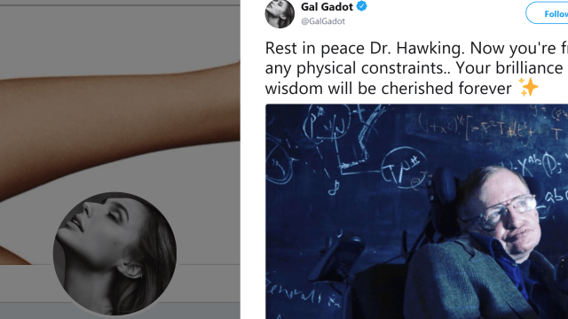 Gal Gadot Under Fire For Her Discrimatory Tribute To Stephen Hawking
