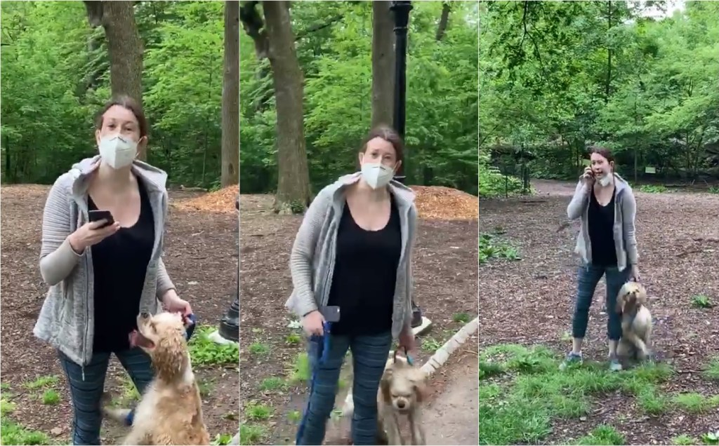 Woman Placed On Leave From Job After Calling Cops On African American Man Over Dog Leash