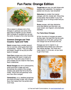 Orange Fun Facts Handout