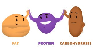Fat Protein Carb
