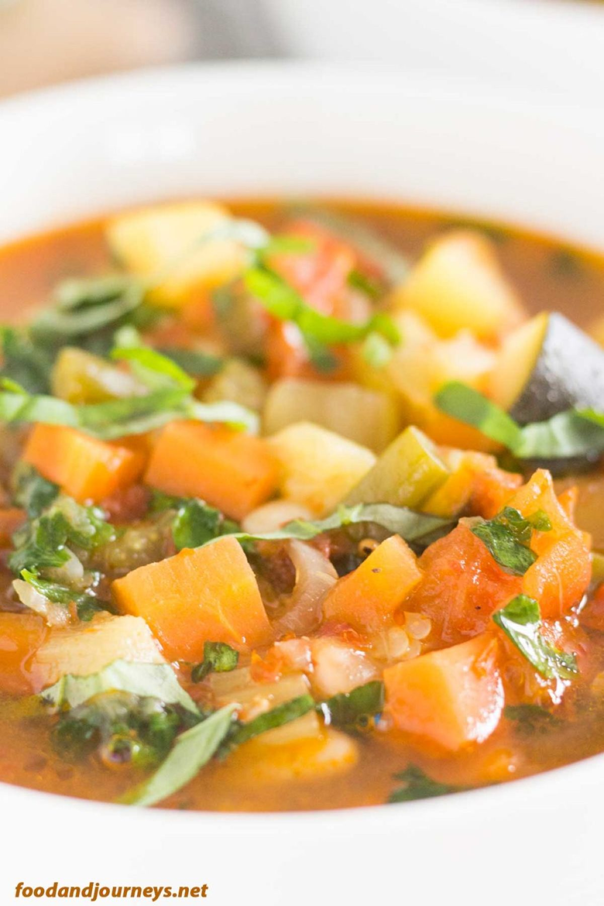 Summer Minestrone pic1|foodandjourneys.net