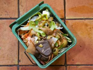 kitchen_compost_scraps