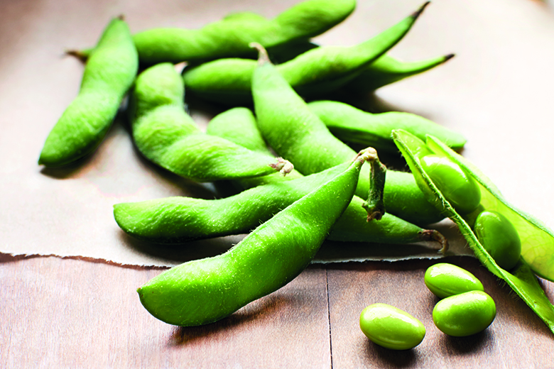 Edamame A Baby Bean Comes Out Of Its Shell Food