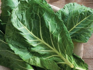 Leaves of collard on a plate