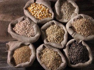 Explore New Foods and Flavors with Whole Grains | Food & Nutrition | Stone Soup