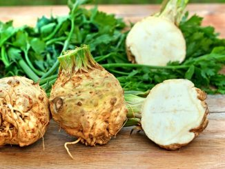 Fresh celeriac on a wood background
