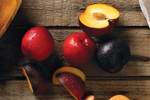 Spectacular Stone Fruits