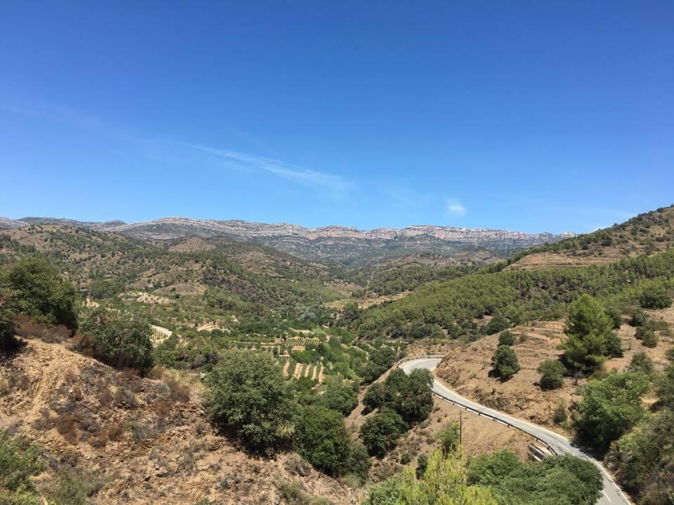 Más allá de los Rioja y Rivera del Duero: D.O. Priorat