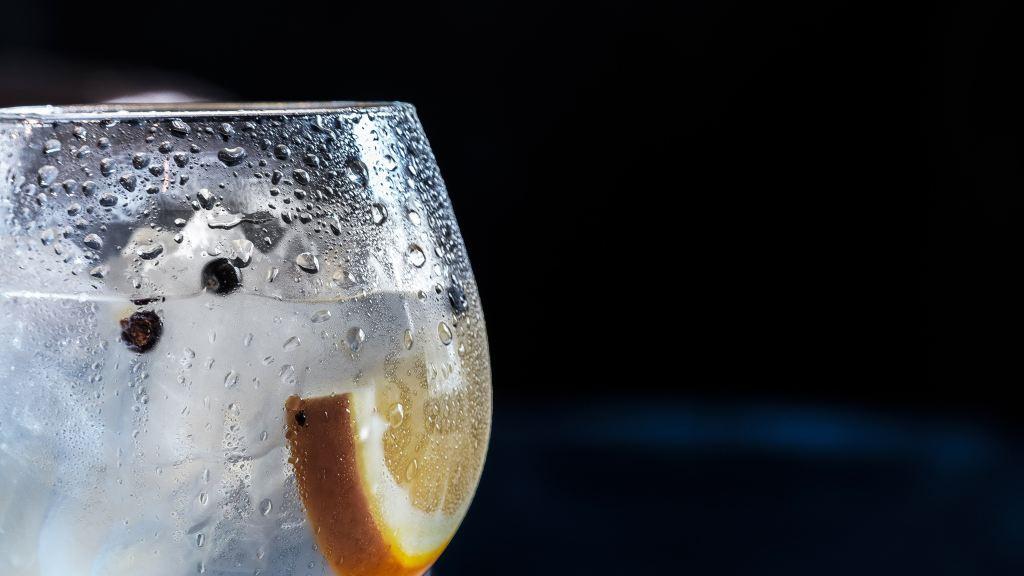 12 restaurantes con los mejores gins de la CDMX