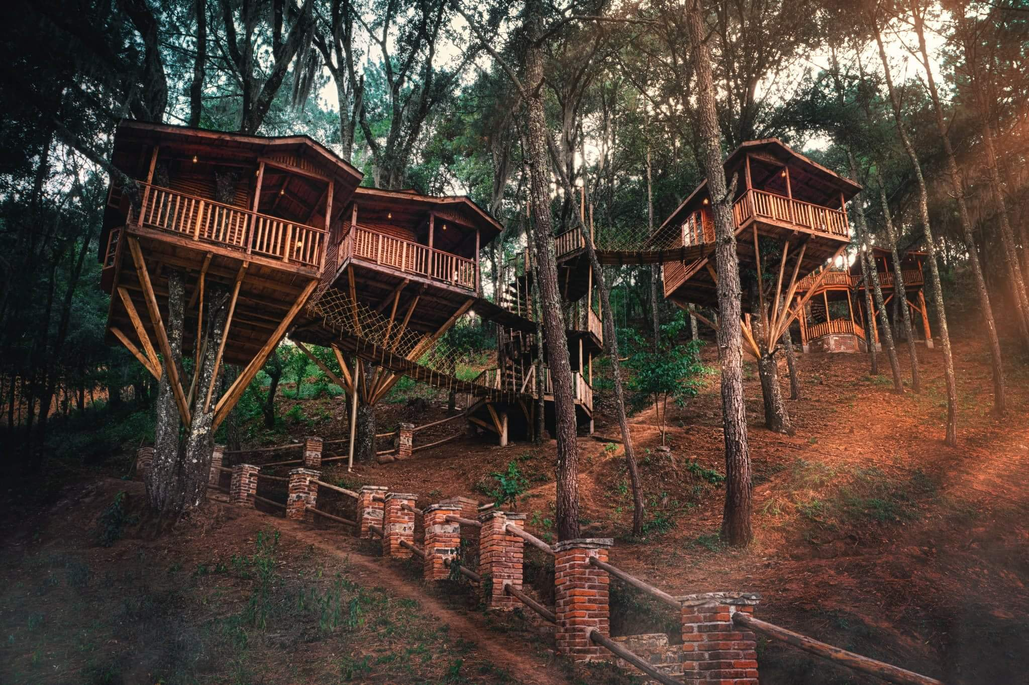 7 hoteles en medio del bosque para escaparte un fin de semana