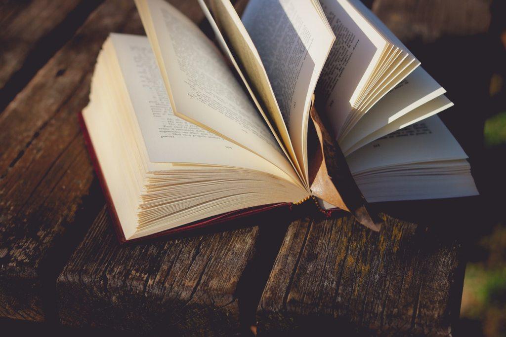 10 libros que te dejaron en la escuela y que no leíste, pero son increíbles