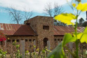 Casa-de-Piedra-vino-mexicano