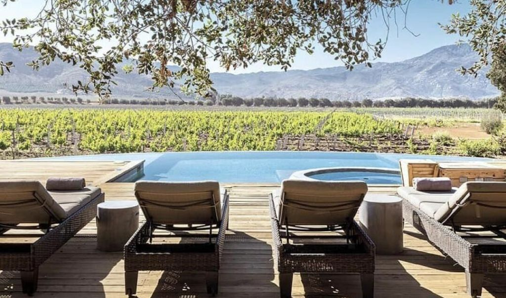 7 hoteles dentro de viñedos en México (lejos de todo, con grandes vistas y buen vino)
