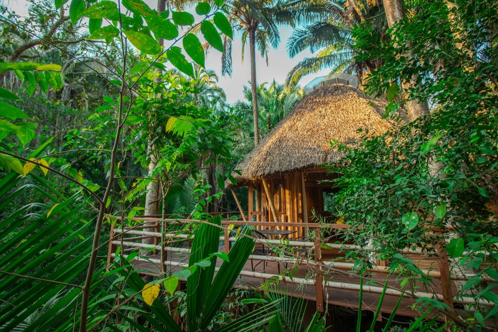 6 hoteles con casas del árbol para hospedarte en México (y tomar las mejores fotos)