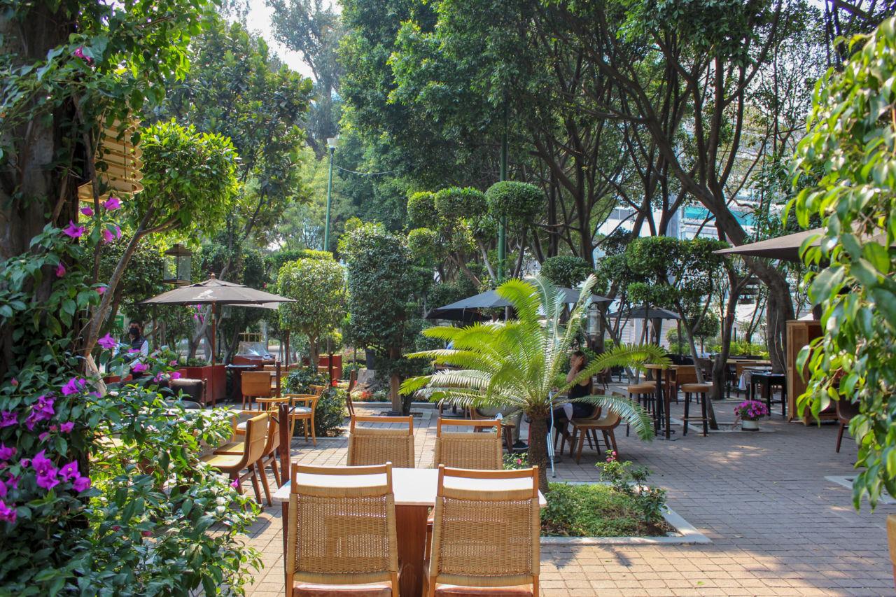 Bosque Gourmet: el nuevo espacio al aire libre donde se reúnen algunos de los restaurantes más 'top' de la CDMX