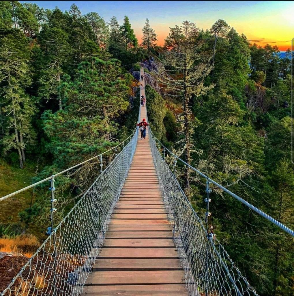 Cuajilomoyas: los senderos secretos con puentes colgantes que necesitas recorrer en Oaxaca