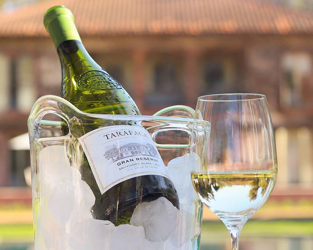 Viña Tarapacá: Un vino de compromiso sustentable y pionero de calidad enológica en Chile