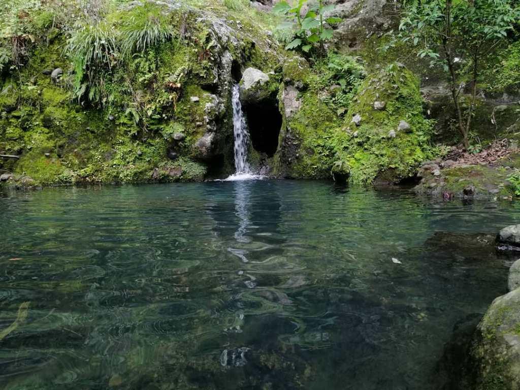 Poza Sagrada de Amatlán de Quetzalcóatl: el paraíso de aguas turquesa a 20 minutos de Tepoztlán
