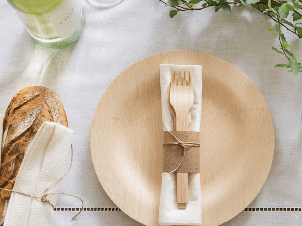 3 plastic free disposable utensil brands