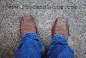 FoodandSwine