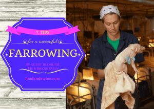 farrowing success