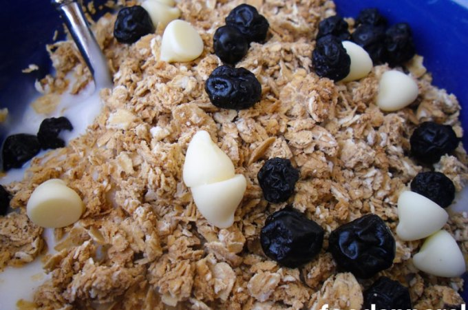 Granola at FoodApparel.com