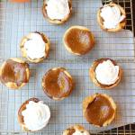 Mini Pumpkin Pie Recipe - a perfect single-serve pie for Thanksgiving so you can try them all! Recipe @foodapparel