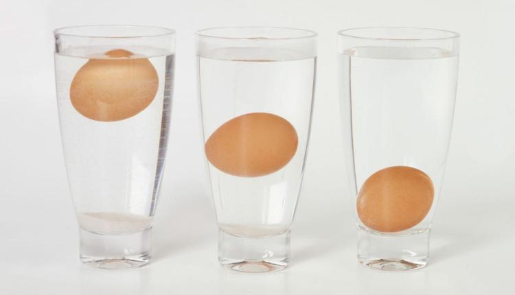eggs-float-spoiled_581180a3eabc86c2_fcawiscyspstfzgcu4wapg