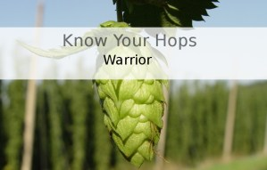 Warrior – Know Your Hops