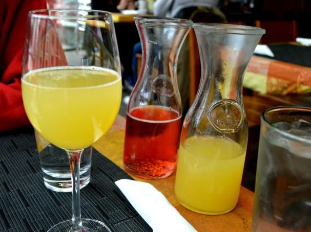 Scion Mimosas