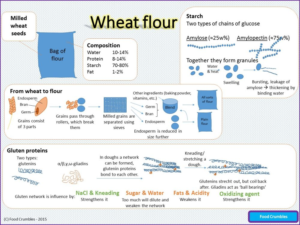 Infographic Flour – Explaining the science of flour in one page