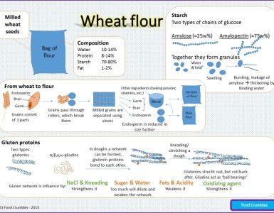 Wheat Flour Infographic