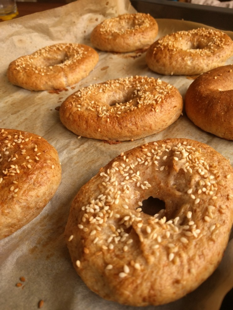 freshly baked wholewheat bagels with sesame seeds