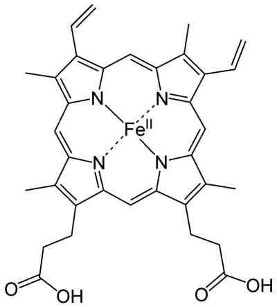 Heme_b structure from Wikipedia