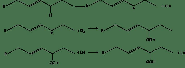 Oxidative rancidity reaction mechanism