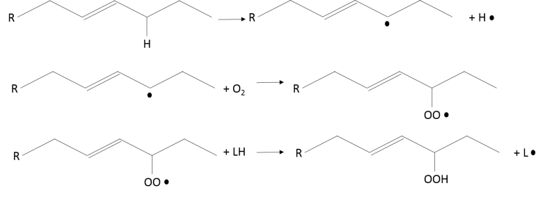 Oxidative rancidity reaction mechanism