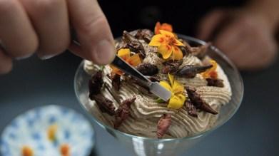 Brooklyn Bugs, food. curated.
