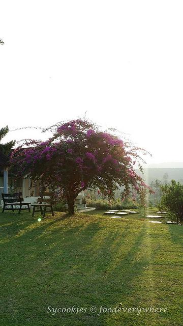 1.Titi Eco Farm Resort