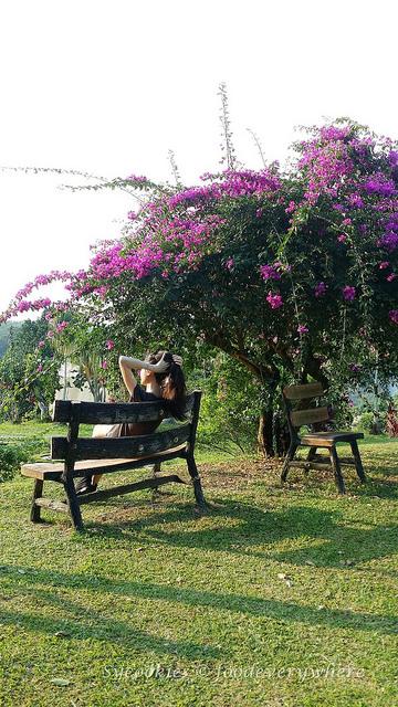 10.Titi Eco Farm Resort