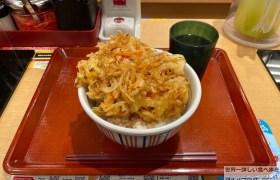 デカ盛りなか卯特製かき揚げ丼特盛店舗限定メニューメガ盛り進撃のグルメ