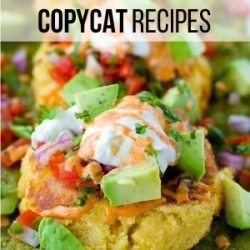 If you love Copycat Recipes like I do, you'l want to check out my entire collection! {Click on the picture to be taken to the collection!}