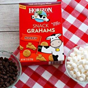 Ingredients needed for easy S'mores Snack Mix