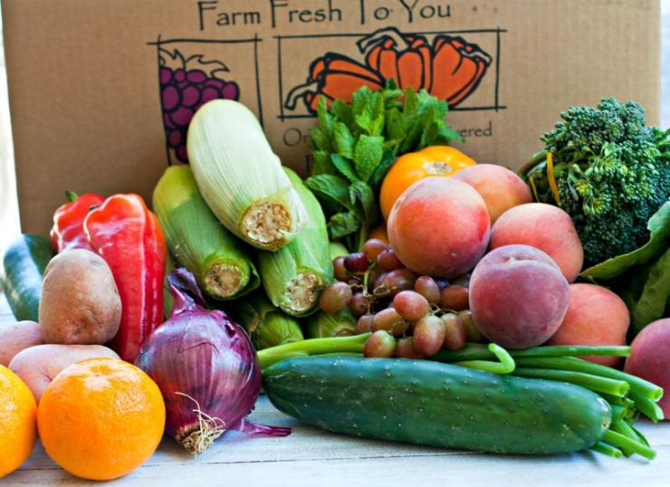 All of the produce inside of my Farm Fresh To You Delivery Box.