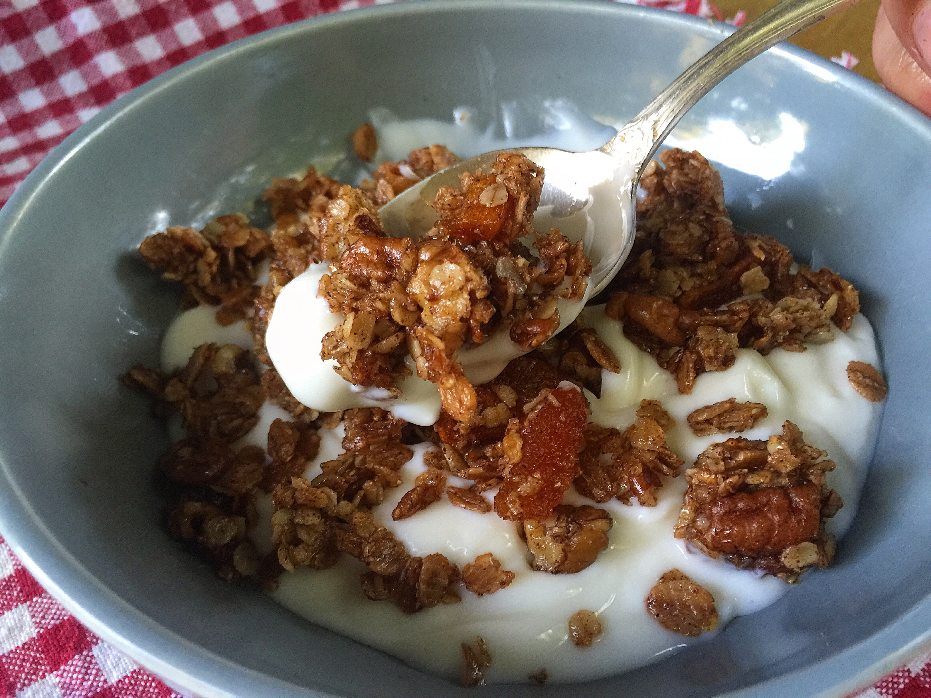Devil's Pool Granola ((A Big Cedar Recipe))