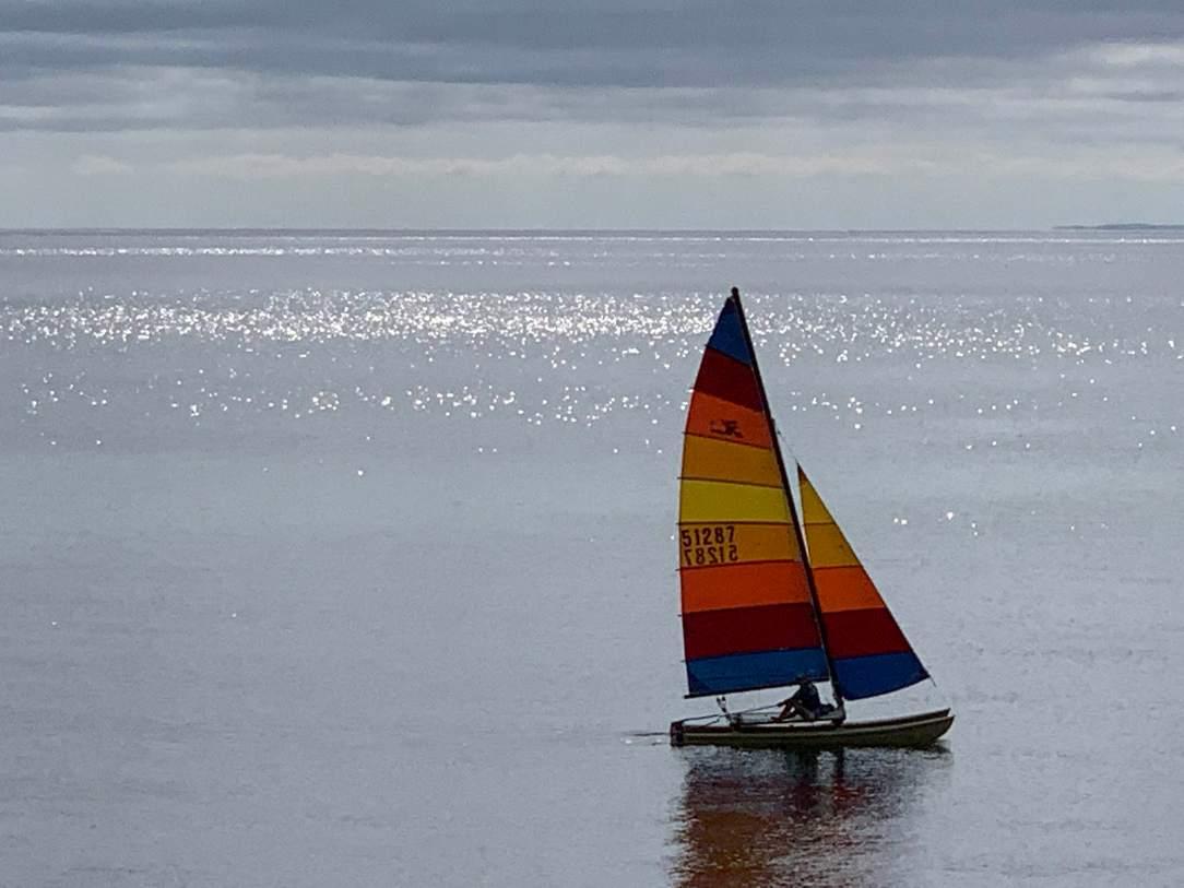 catamaran copy