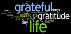Gratitude (Charles Shaughnessyblog)