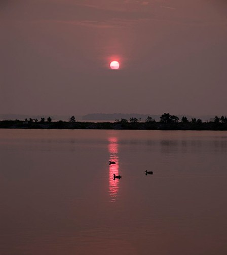 Photo by gracey (Sunrise)